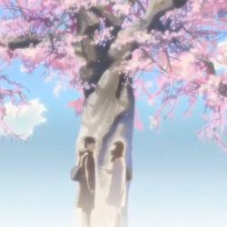 Vài bộ anime mà tôi đã xem