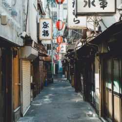 Khu phố của cô, đàn cừu của cô – Murakami Haruki