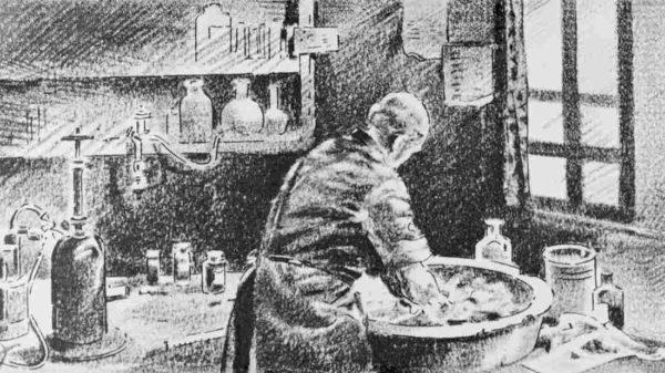 Phản xạ Semmelweis